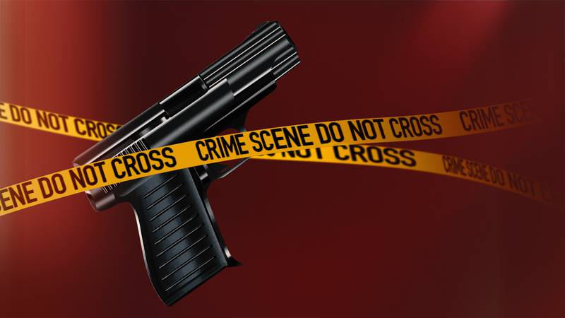 Redwood County identifies the victim in Sunday's shooting near Belview.