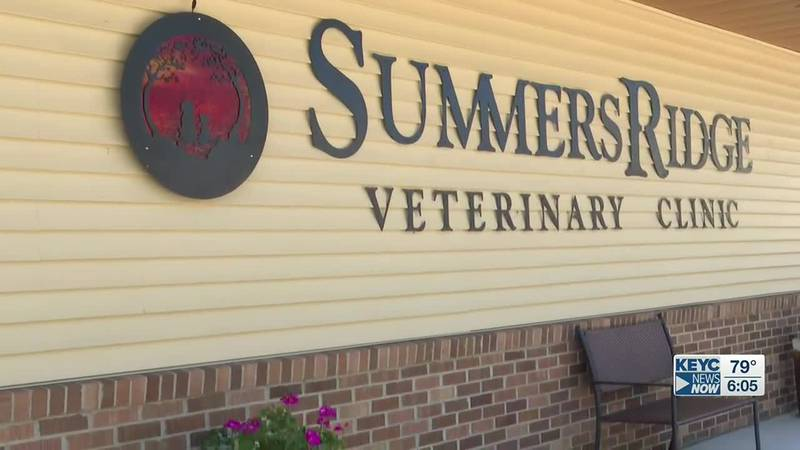 Janesville vet clinic finds rabies infested bat