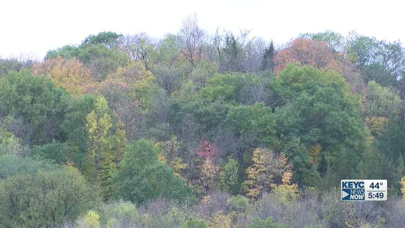 Kelsey and Lisa headed to Minneopa State Park for a last-minute look at the colorful scenery in...