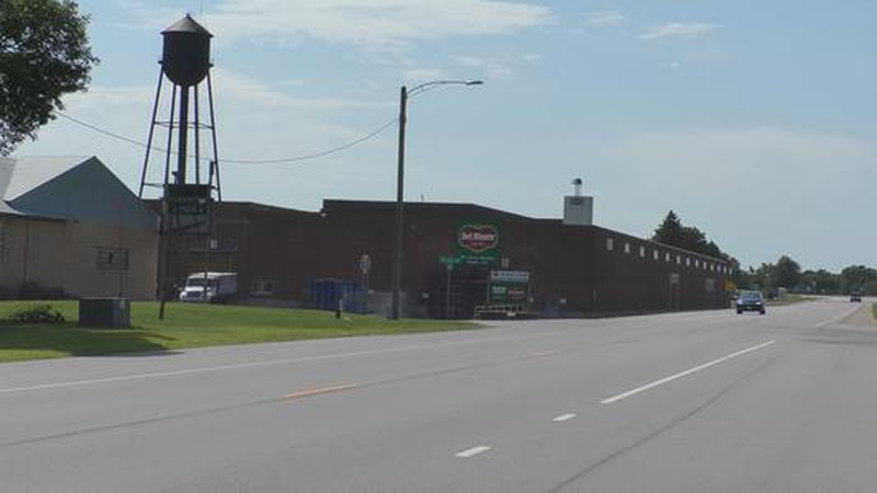 FILE — The former Del Monte plant is pictured in Sleepy Eye, Minn., in this undated file photo....