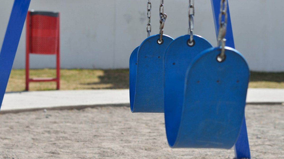 The school event aims to raise funds to purchase adaptive playground equipment.