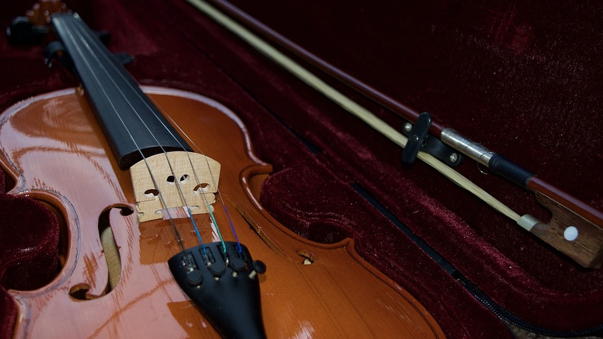 FILE — The Two Rivers Community Orchestra is resuming regular activities this fall, beginning...