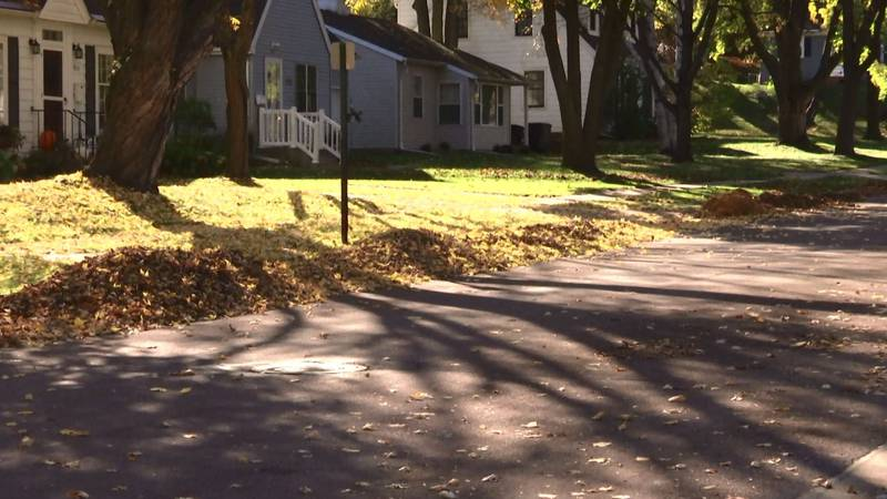 FILE — Mapleton's annual leaf vacuuming is scheduled to begin Tuesday, Oct. 12.