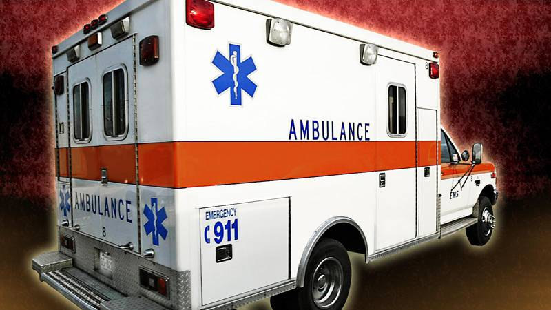An 11-year-old on a bicycle was among those injured in a crash in Madison Lake Sunday.