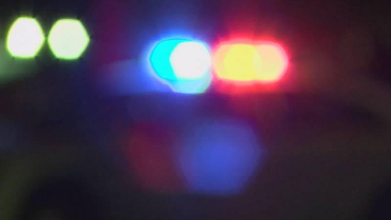 Police lights blurred at night (Source: KFVS)